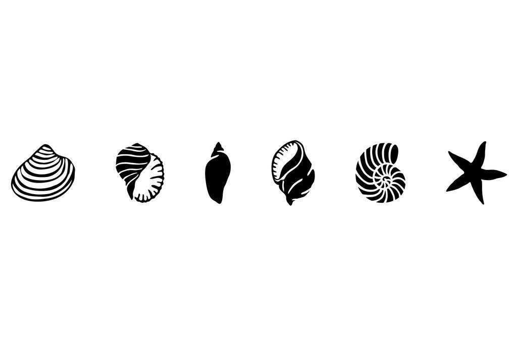 Pochoir Coquillages - Frise - Pochoirs & Peintures